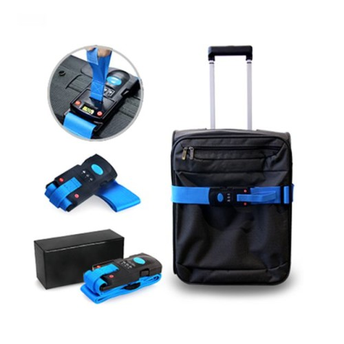 Luggage Belt Weighing Scale-1