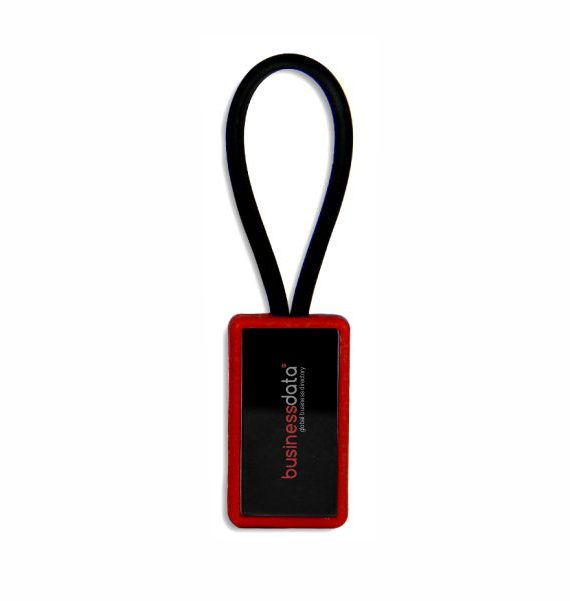 Loop Key Holder 1